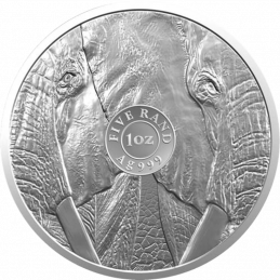 1oz South Africa, Big Five Elephant, 2010, Silver, Reverse