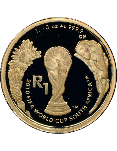 2010 World Cup Soccer, Reverse (R1, 1/10 oz, 24 ct gold)